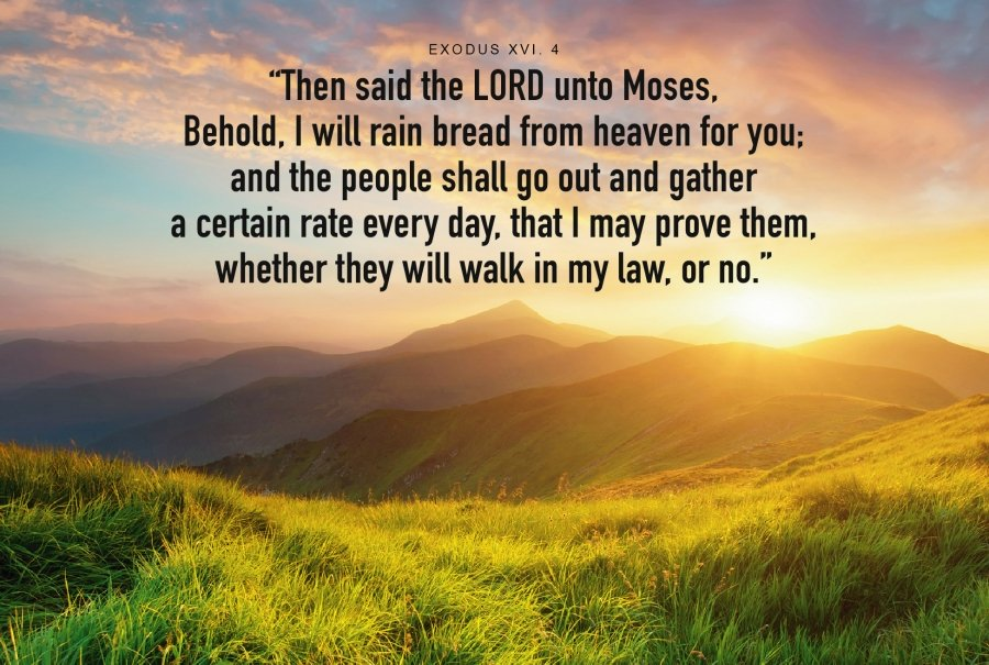 I will rain bread from Heaven for you